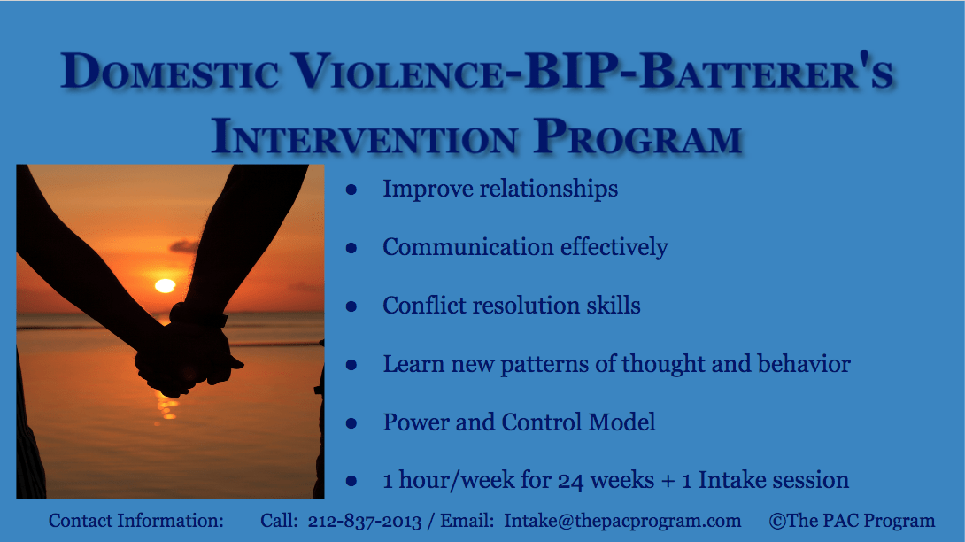 Domestic Violence BIP The Pac Program of NYC